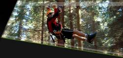 Adrenalin park - Lanové centrum