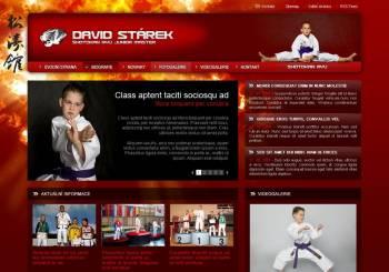 Osobní stránky Davida Stárka