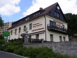 Wellnes penzion Gräfenberg ***